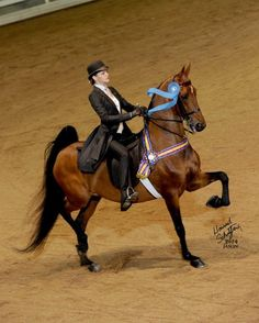 Grace Allison - Junior Equitation Kierson Farm www.facebook.com/GraceAllisonEquitation