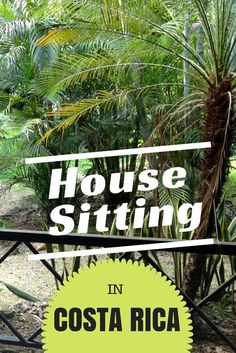 Learn how we got 8 house sits in Costa Rica with this in-depth guide.