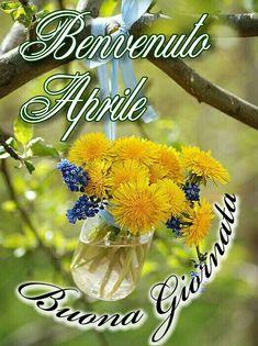 Saraseragmail.com.. Benvenuto Aprile! Italian Memes, Italian Life, Good Morning Good Night, Calendar, Genere, Sink, Frases, Spring, Bonjour