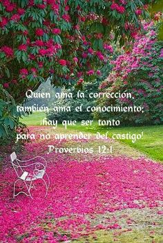 Proverbios 12:1