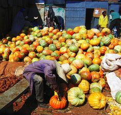 Pumpkin galore in Addis Ababa, Ethiopia    Photo by Martino's doodles