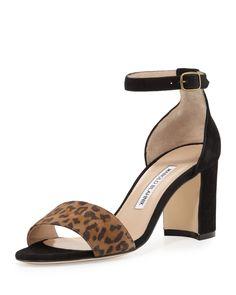 Manolo Blahnik Lauratomod Suede Ankle-Wrap Sandal, Leopardino/Black, Size: 5B/35EU