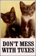 Don't mess with tuxes :) :) :)