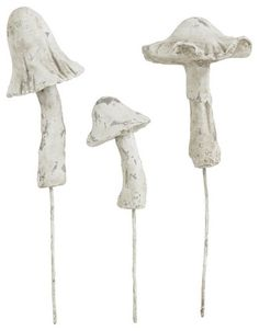 Cement Garden Mushrooms...