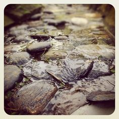 #taiwan #淡水 #緣道觀音廟 傳說中的小溪