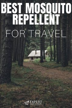 Avoid Those Annoying Mosquitoes And Protect Yourself From Harmful Bites On Your Next Vacation. Discover Which Are The Best Mosquito Repellents For Your Next Trip Overseas. Best Mosquito Repellent, Kids Luggage, Travel Expert, Overseas Travel, Mosquitoes, Travel Tote, Annoyed, Best Vacations, Good Things