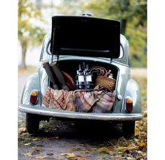picnic car!