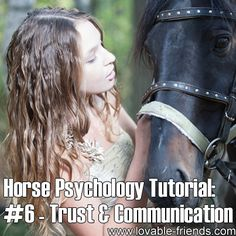 Horse Psychology Tutorial - Part 6 Trust and comunication