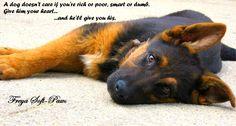 german shepherd quote