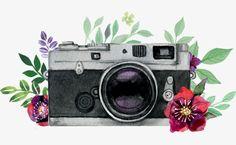 милый,фотография,выставка,фотоаппарат,цветок,ручной,векторный диаграмма,фотовыставка