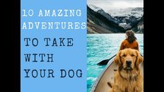 10 Amazing Adventures To Take With Your Dog  #dogs