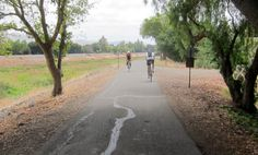 The Alameda Creek Trail East