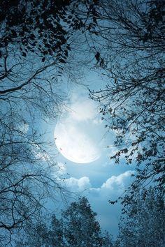 Luar   Moonlight