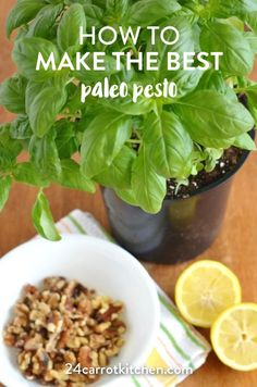 You will love this low fodmap, dairy free, garlic free vegan pesto. This creamy basil paleo pesto recipe that is grain free is sure to become your favorite! Carrot Recipes, Paleo Recipes, Real Food Recipes, Kitchen Recipes, Delicious Recipes, Free Recipes, Low Acid Recipes, Clean Recipes, Paleo Pesto