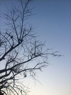 2017년 2월 18일의 하늘 #sky