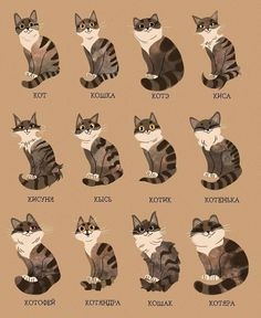 otdushi: kot - a regular cat koshka - a regular female cat kote. Cat Character, Character Design, Animals Watercolor, Animals And Pets, Cute Animals, Cat Anatomy, Warrior Cats Art, Fluffy Cat, Cat Drawing
