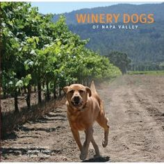 Winery Dogs of Napa Valley.  Love this book.  Wish my dog hadn't chewed on it :(
