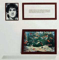 Sophie Calle Blind fish tank, my second favorite from the series