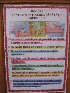 Bine ati venit pe blogul clasei pregatitoare B, STEP BY STEP: Regulile clasei Blog Page, Bullet Journal, Diana, Rome, Figurine