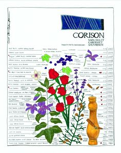 2001 Corison Cabernet was one of the best wines I had last year. Here's a poster illustrating 25 vintages.