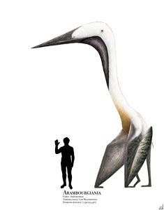 Just finished my reconstruction of one of the largest pterosaurs ever, the incredibly long-necked Arambourgiania philadelphiae from Late Cretaceous Jord. The Good Dinosaur, Dinosaur Art, Dragons, Jurassic Park World, Extinct Animals, Prehistoric Creatures, Creature Design, Sea Creatures, Deviantart