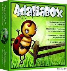 kit delevage pour coccinelle adaliabox