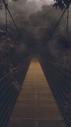 Dark-Forest-Bridge-Wallpaper-iPhone-Wallpaper - iPhone Wallpapers - dark is the art - Forest Wallpaper Iphone, Dark Phone Wallpapers, Halloween Wallpaper Iphone, Bridge Wallpaper, Apple Wallpaper, Screen Wallpaper, Creepy Backgrounds, Cute Wallpaper Backgrounds, Tumblr Wallpaper
