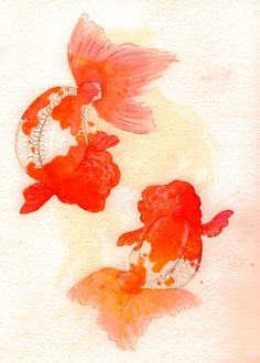 Goldfish painting by ryusuke fukahori japan a the most for Milky koi fish