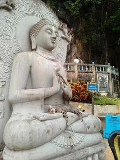 Neko Nirvana: Cat-Napping In The Lap Of Buddha - WebEcoist