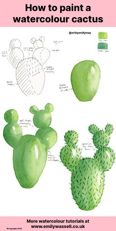 Want to learn to paint a cactus in watercolour? Use this simple step-by-step guide to create a beautiful loose cactus with just two colours! Watercolor Beginner, Watercolor Paintings For Beginners, Watercolor Tips, Watercolor Cactus, Watercolor Drawing, Watercolor Techniques, Cactus Drawing, Cactus Painting, Cactus Art