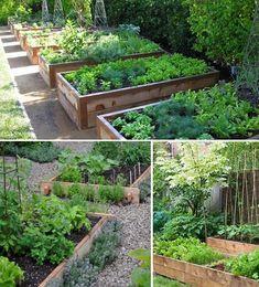 Herb Garden, Vegetable Garden, Home And Garden, Raised Garden Beds, Front Yard Landscaping, Permaculture, Garden Projects, Farmer, Backyard
