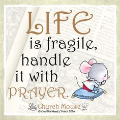 Who else does this? #LittleChurchMouse
