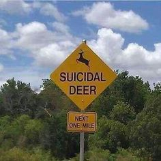 Suicidal Deer Road Sign. How funny. Hope those passing are insured! http://www.bankersinsurance.com/
