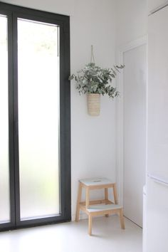 Eucalyptus in hanging straw vase and glass doors in designer Ilaria Fatone's ground-floor apartment kitchen