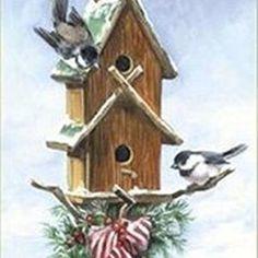 Nieve de la bandera de Winter Garden para pájaros                                                                                                                                                      Más