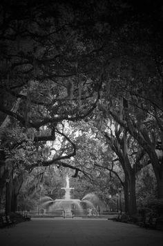 Forsythe Park Fountain Photo by Amy Larson Downtown Savannah, Savannah Chat, Fountain, Amy, Water Fountains