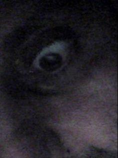 Profil Facebook, Eyes, Cat Eyes