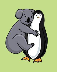 Koalas Penguins Koala Bears Penguin