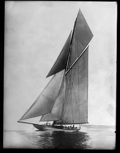 Yacht 'The Shamrock' competing in America's Cup, ca. 1900