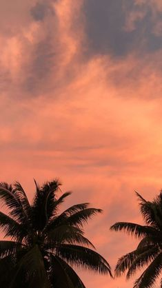 Sunset is the sunset in the afternoon. That time is beautiful scenery. We will present an article about sunset quotes love. Orange Wallpaper, Sunset Wallpaper, Cute Wallpaper Backgrounds, Pretty Wallpapers, Tumblr Wallpaper, Nature Wallpaper, Screen Wallpaper, Phone Backgrounds, Wallpaper Quotes