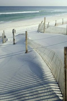 Island Beach State Park, New Jersey - This looks really good about now.