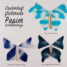 Wirklich flatterhafte Schmetterlinge aus Papier - eine filigrane Sommerbastelei für geschickte Kinder! Welche Arten erschafft Ihr? Eigene Namen zu erfinden macht mindestens so viel Spaß wie das Basteln... :-)