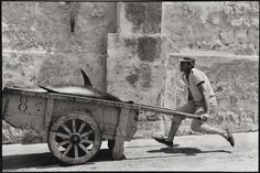 Leonard Freed - Sicilia 1975