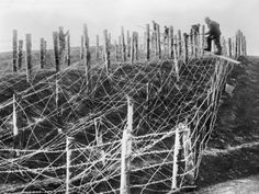 World War I: Barbed Wire Photographic Print at Art.com