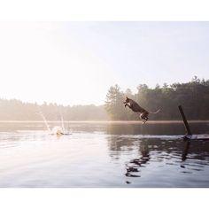 Maddie jumps - this wild idea
