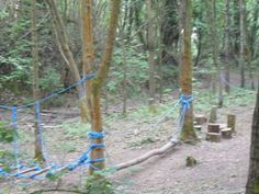 Wacky woods low ropes 1