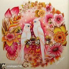 @Regrann_App #wonderfulcoloring from @crislopez745 -  Angel & Sophie - Do livro Magical Jungle (Selva Mágica) - Johanna Basford #coloringbook #coloring #divasdasartes #livrosdecolorir #johannabasford #coloringforadults #chamaleonpens #kohinoor #fabercastell #giotto #editorasextante #kumbrasil #staedtler #staedtlermars #maped #mapedcolorpeps #araras #cacatuas #rosa #lapisdecor #arte #regrann