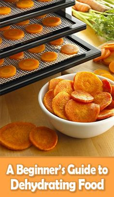 A Beginner's Guide to Dehydrating Food :: Tips & Tricks