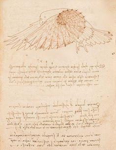 Apunte de Leonardo Da Vinci.