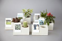 Printstagram - Concrete Planter